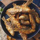 Рибний привіт з Одеси
